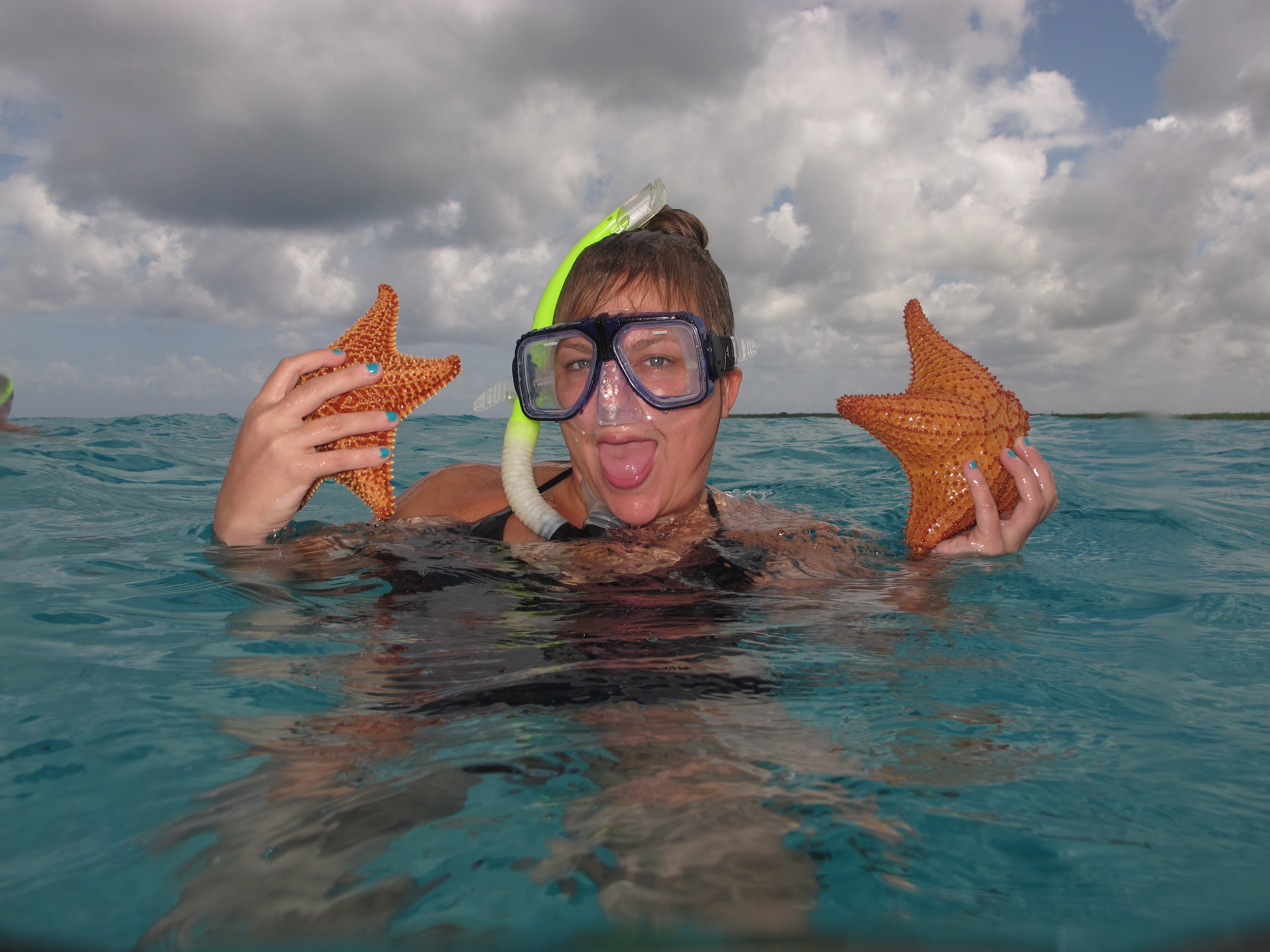 Giant starfish in Cozumel