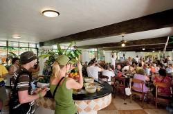 Mayaland Playa del Carmen Restaurant