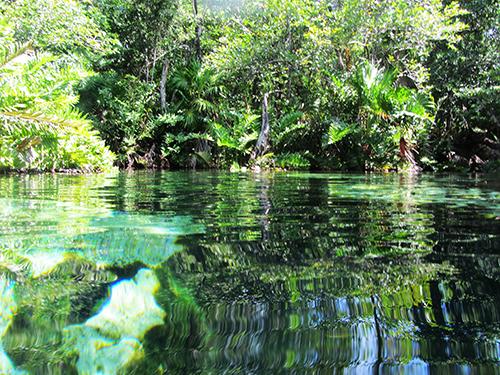 Xcacel beach cenote