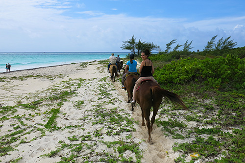 Caribbean Beach horse riding in Playa del Carmen