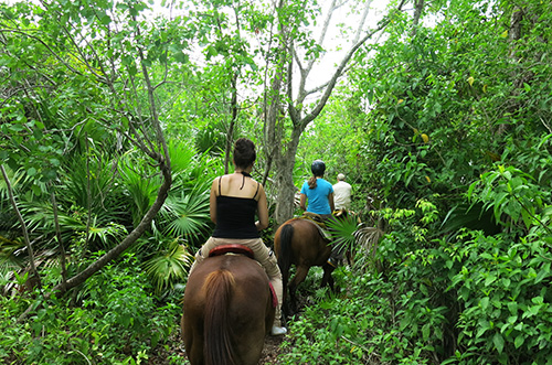 Jungle horse riding in Playa del Carmen