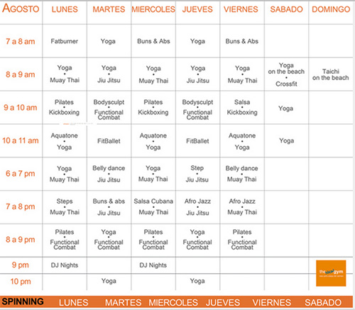 the gym playa timetable