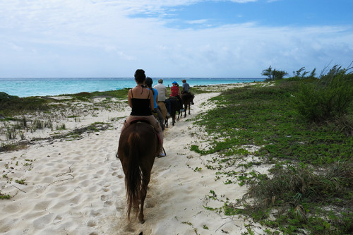 Horse Riding Photo - Condo Hotels Playa del Carmen