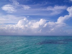 Snapshot - A Brilliant Love for the Riviera Maya! - Condo Hotels Playa del Carmen