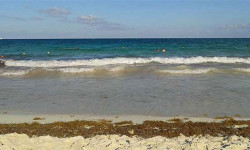 beach in Mexico - Condo Hotels Playa Del Carmen
