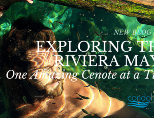 Exploring the Riviera Maya One Amazing Cenote at a Time